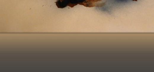 Cover_Fragmente zur Geschichte des 19. und 20. Jahrhunderts